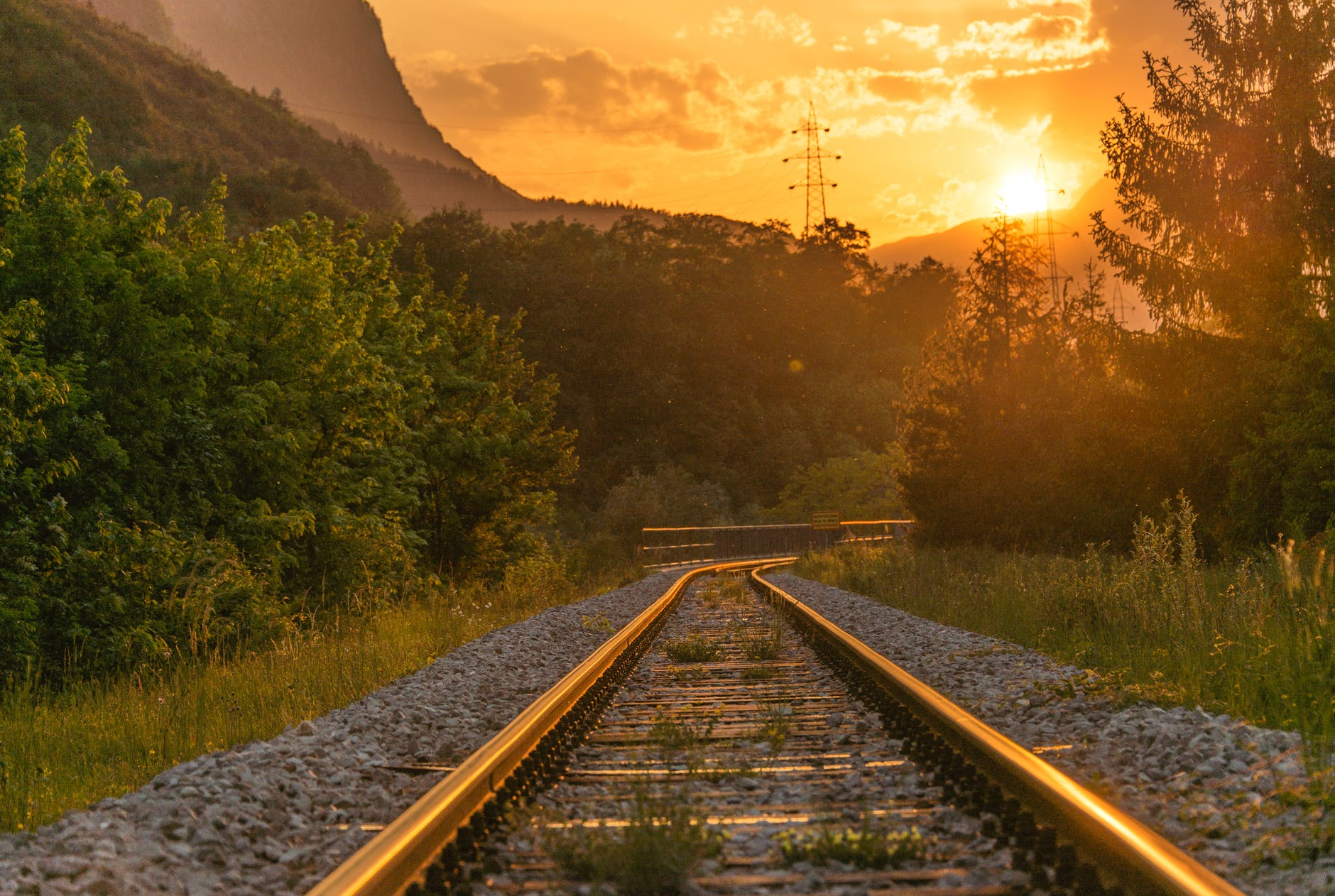 train railway near trees