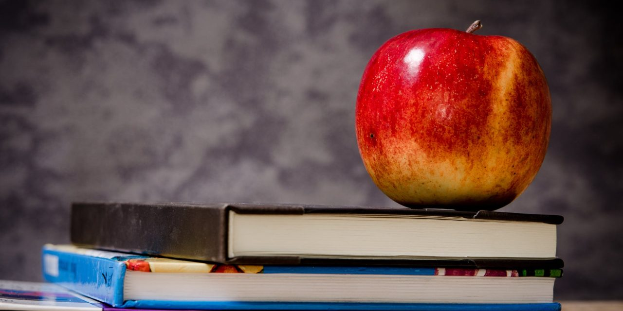 tips for back to school shopping on a budget