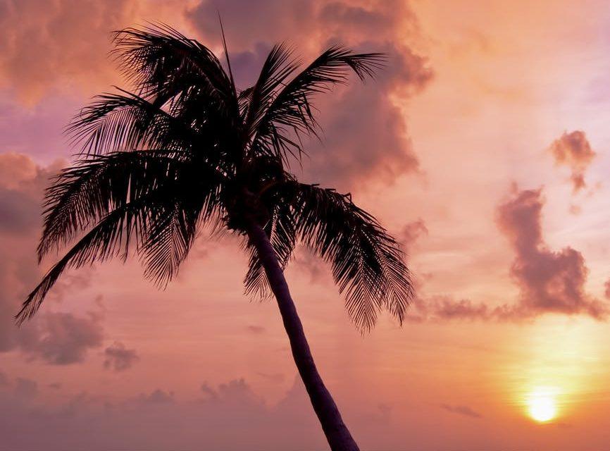 Cheap kid-friendly summer vacation ideas